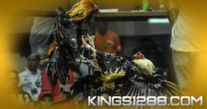 KingS128